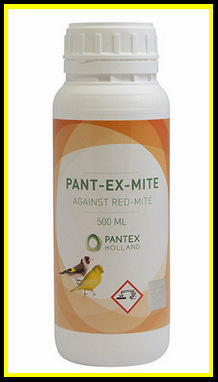 Pant-Ex-Mite 500ml l-res 1